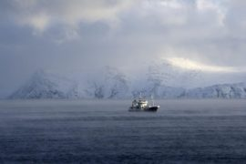 Norway activists take fight on Arctic oil drilling to European Court