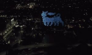 Six legged dog projected against building at night