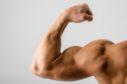 Close up on a bodybuilder.