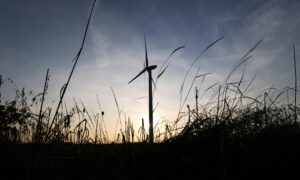 uk winds