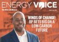 Energy Voice supplement