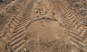 Tyre tracks in dust