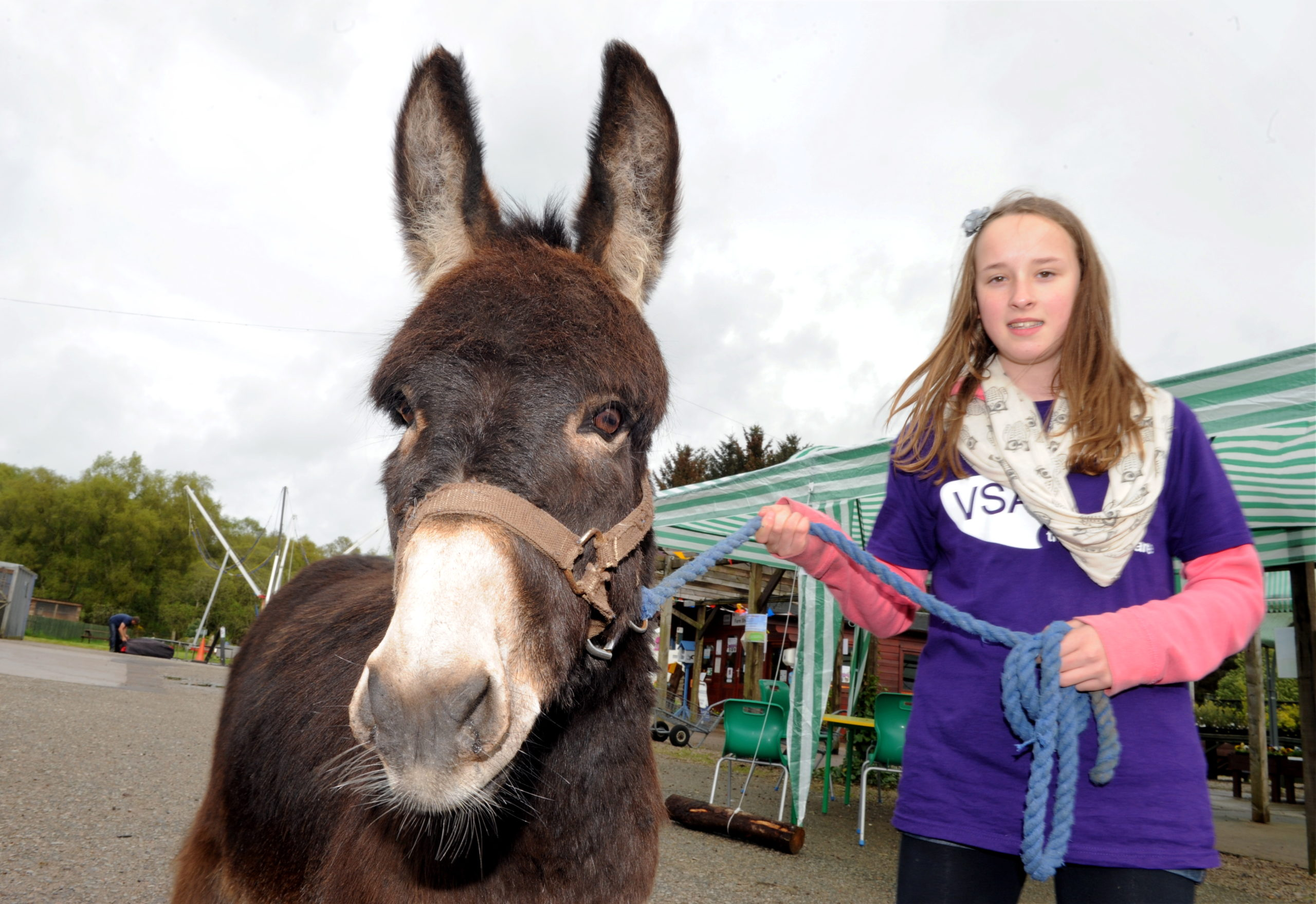 Voluneer Aimee Buchan with one of the mini donkeys at Easter Anguston Spring Fayre