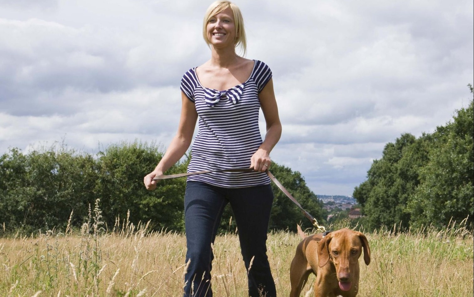 CASES:  Walking a  dog in a field prompted a planning complaint.