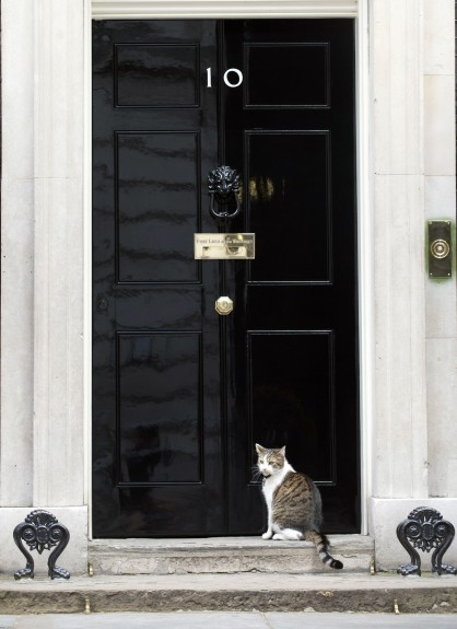 Larry the cat outside 10 Downing Street, London, as Britain goes to the ballot box today in the most uncertain General Election for decades, with no party on course to emerge a clear winner.