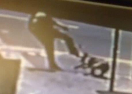 Undated handout still taken from CCTV issued by the RSPCA of a man kicking a dog in the head.