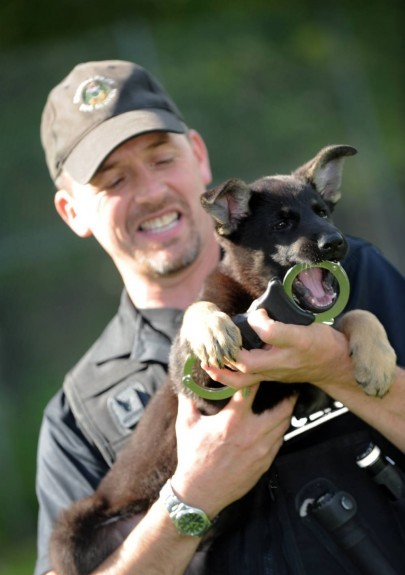 Dog handler PC Colin Hunter with Yogi when he was just a six-week-old puppy.