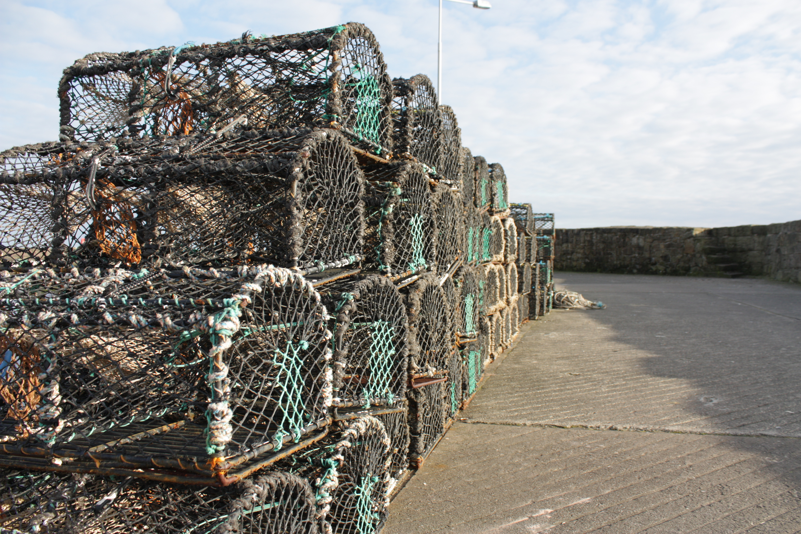 Lobster creels, similar to those pictured, were taken from Stonehaven harbour.