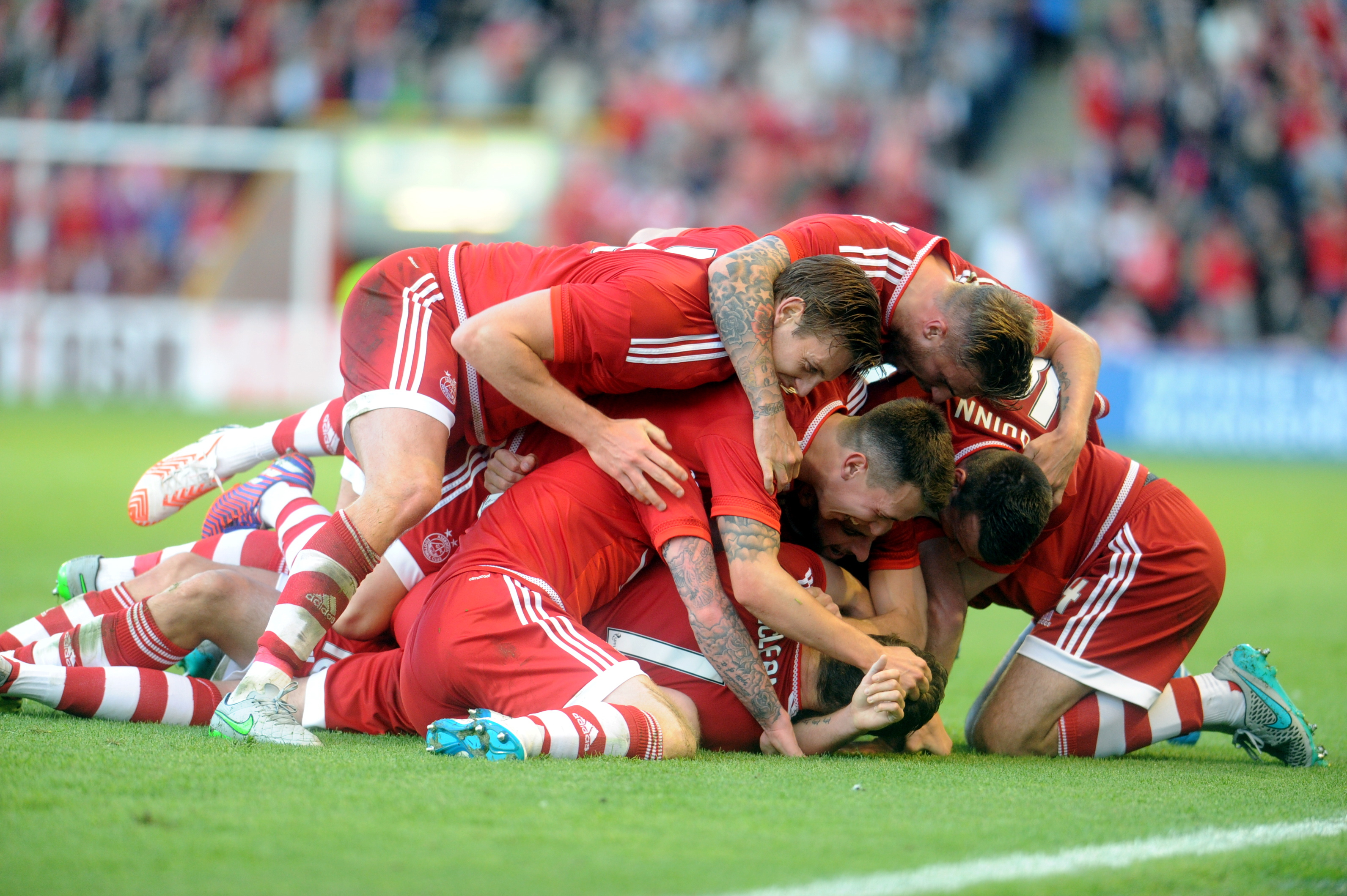 Niall McGuinn scores the Dons' opener and celebrates with team-mates