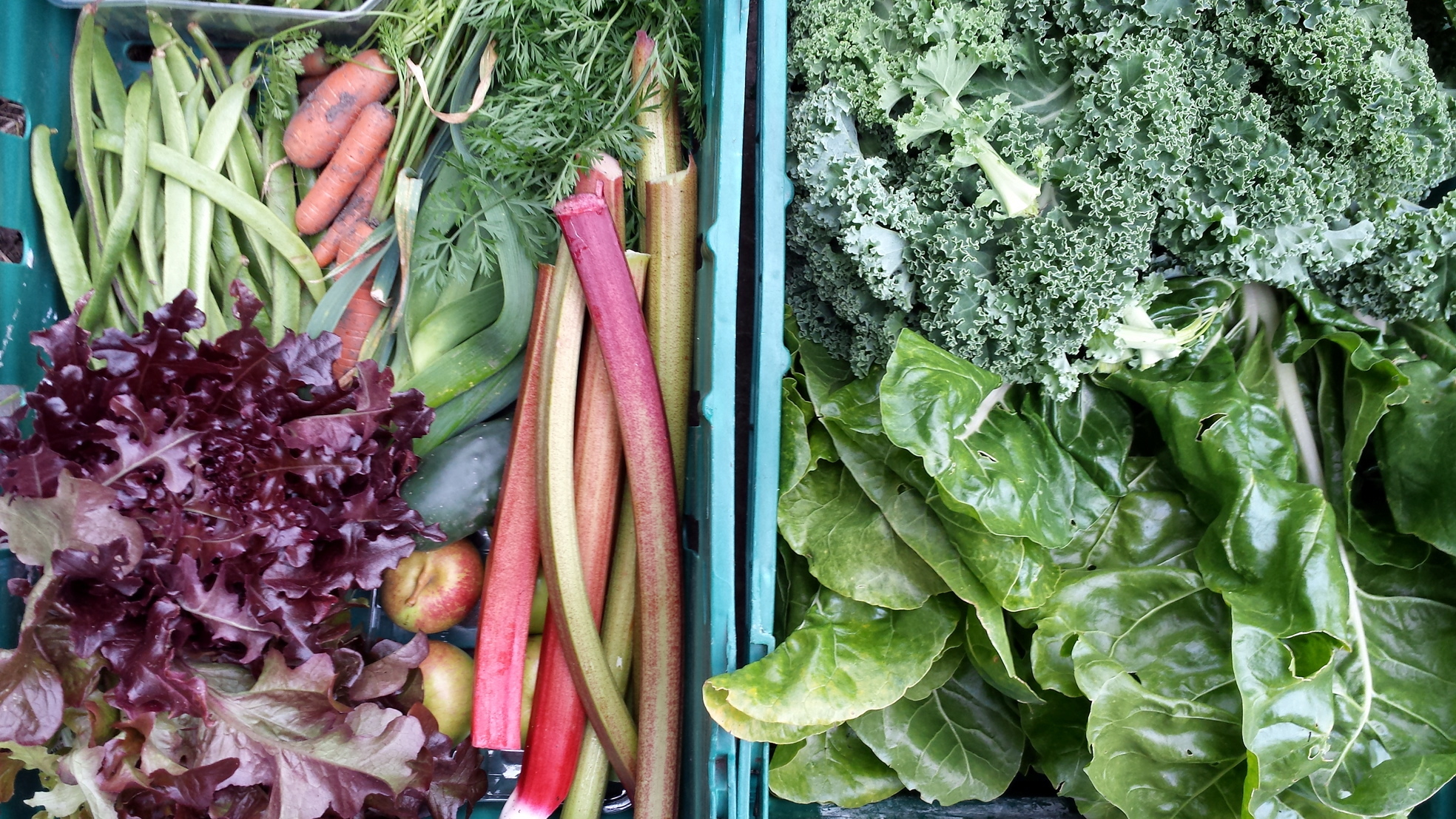 FIVE-A-DAY:  Fruit and veg are sold.