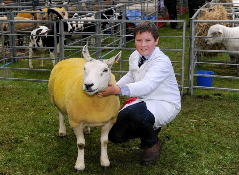 Champion Young Handler Hugh Gordon with his Texel/Beltex.