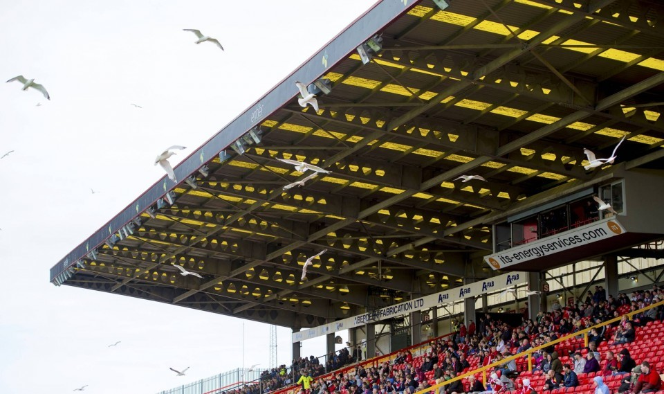 Seagulls have become an increasing menace to Dons fans at Pittodrie.