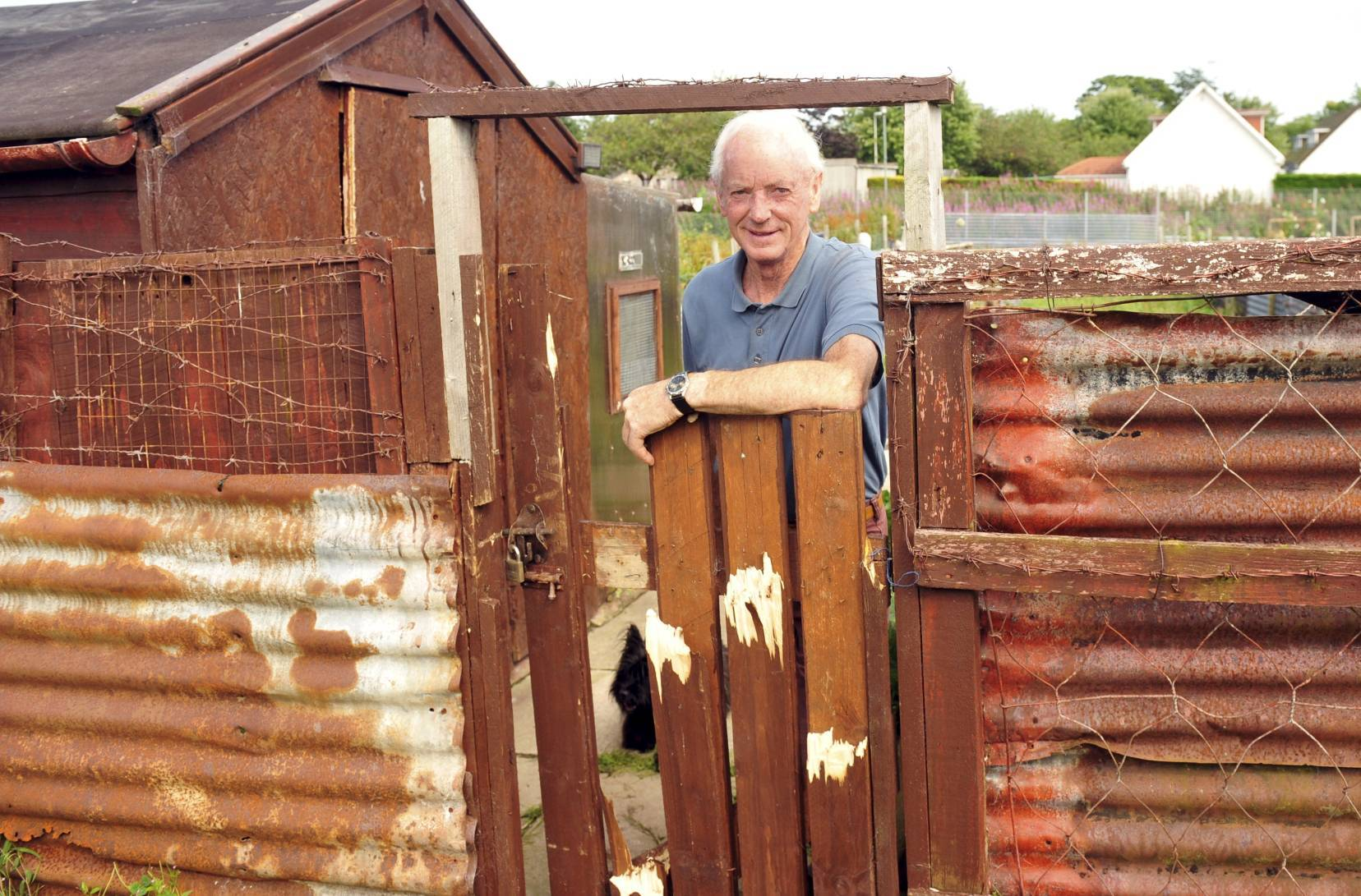 The Stoneywood Allotments have been targeted by vandals.