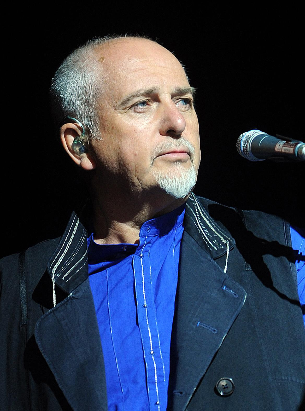 Peter Gabriel has enjoyed solo success.