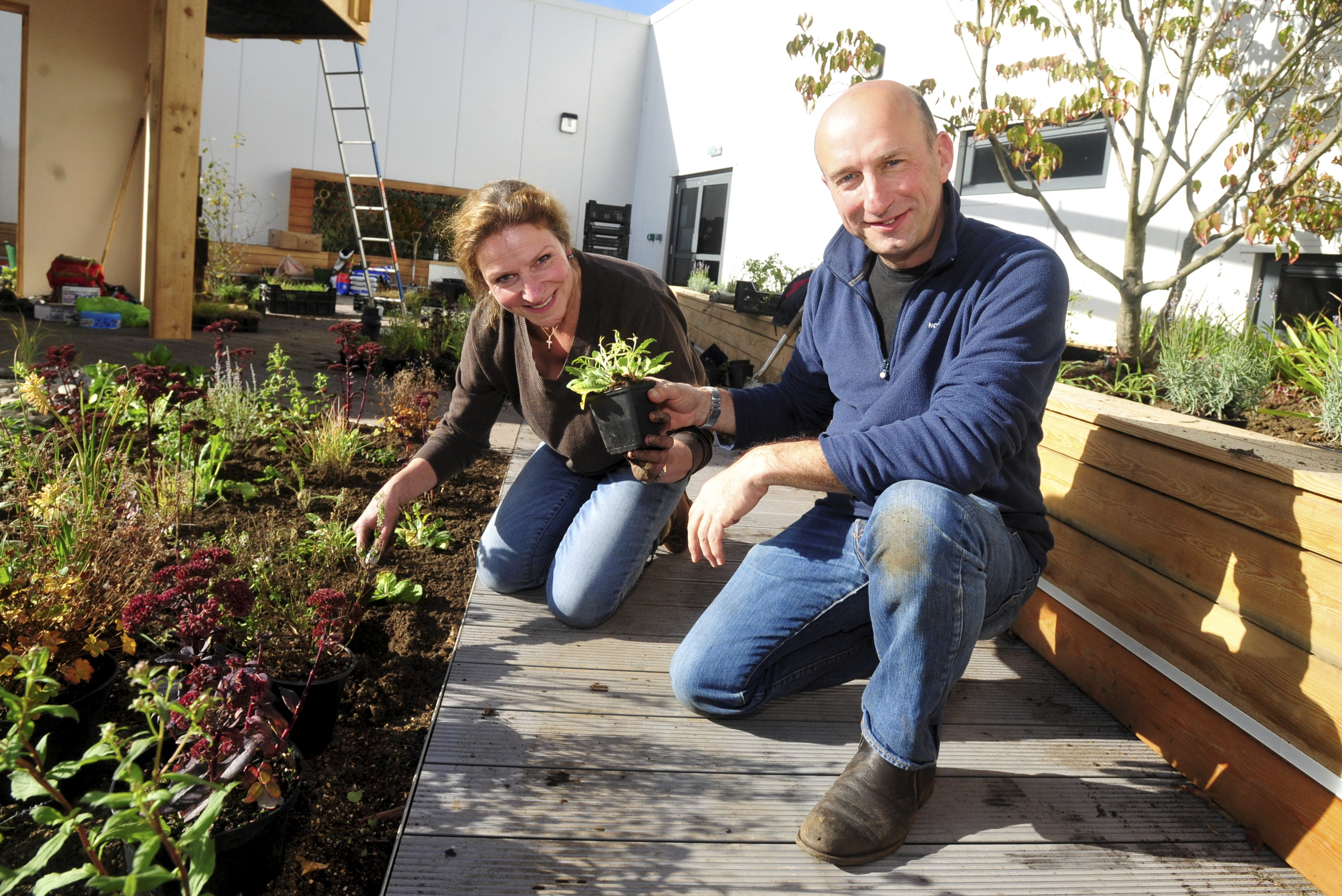 Professor Nigel Dunnett was at Aberdeen Royal Infirmary's therapeutic garden to help with planting.
