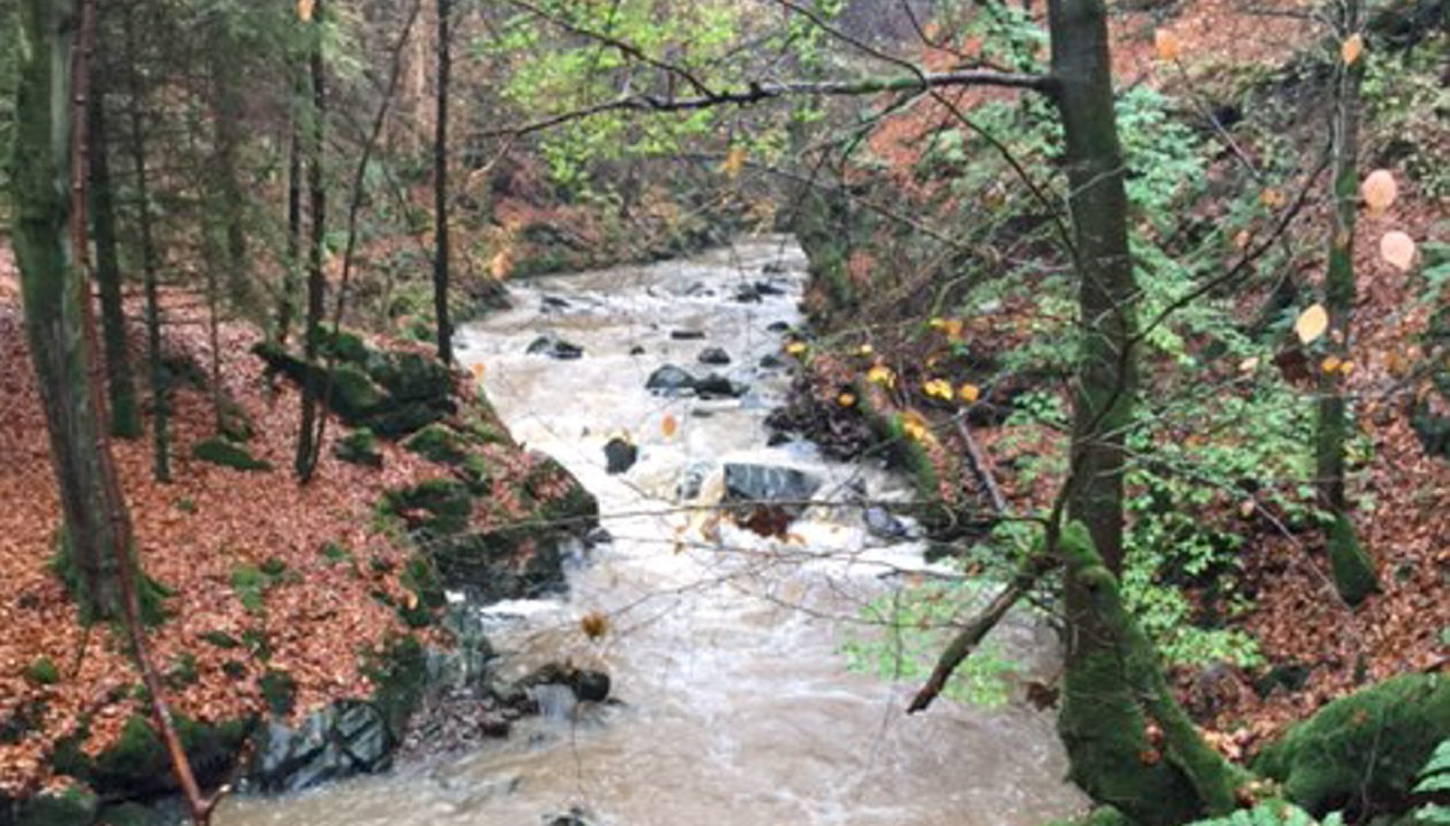 Concern has been raised that the Crynoch Burn is becoming polluted due to work being carried out on the AWPR.
