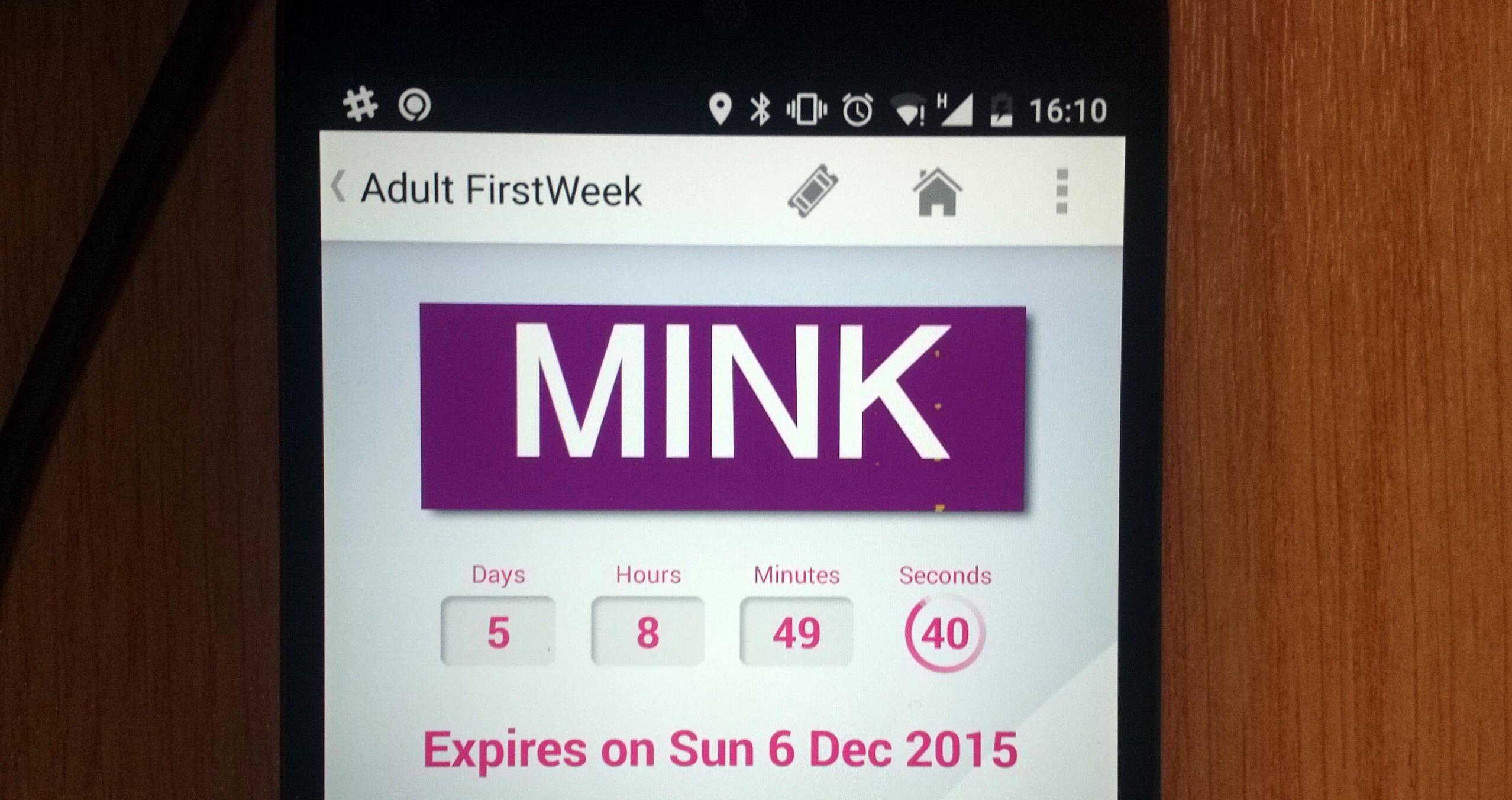 Today's First UK Bus mTickets random word was 'mink'