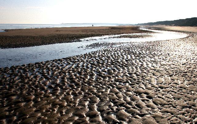 Kinnaber beach. Picture: Ian Cleland