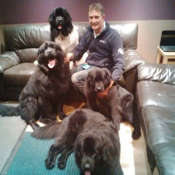 Big Billy, left, and with Steve and the couple's other dogs.