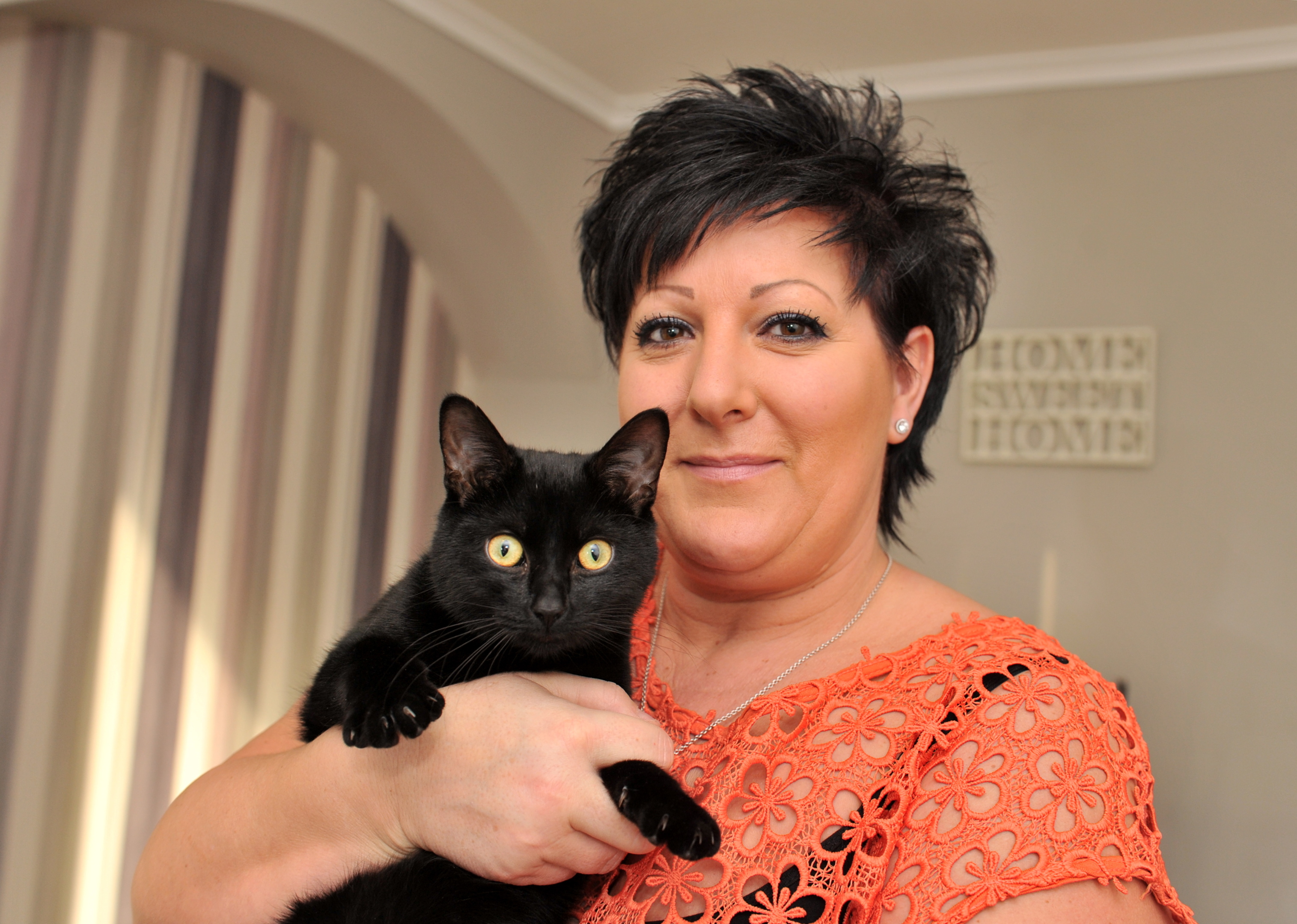 Mo will keep the fugitive feline until its owner is found.