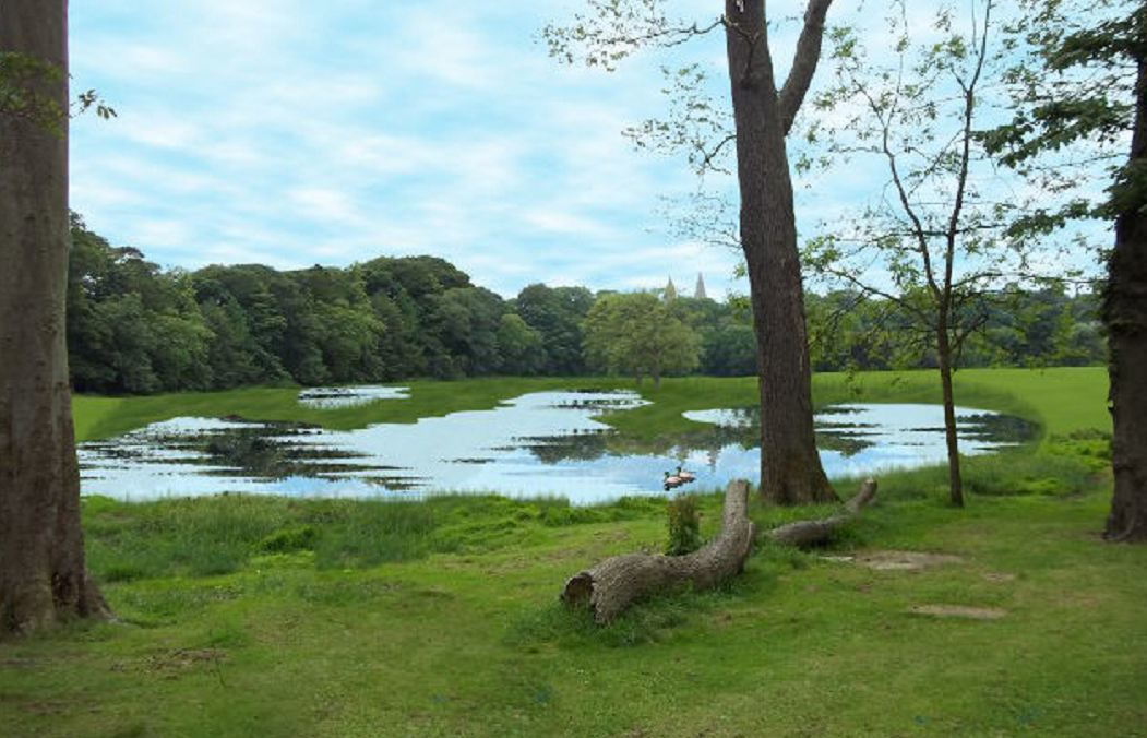 An artist impression of what the park could look like