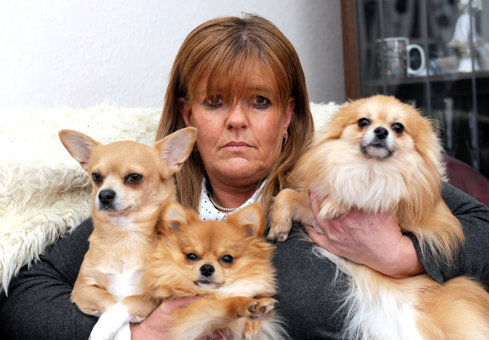 Crystal Penfold with her dogs, Tommy, Rubyroo and Buddy.