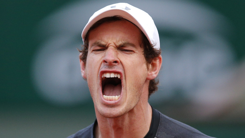 Andy Murray lost in the final of the French Open.