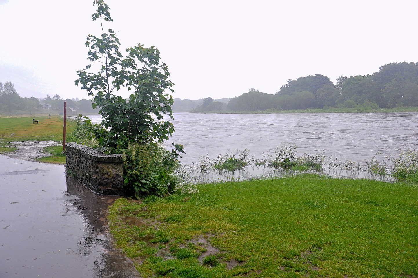 Flooding at Riverside Drive in 2016