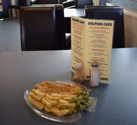 dolphin-cafe-sponsored-image-e1463490283387