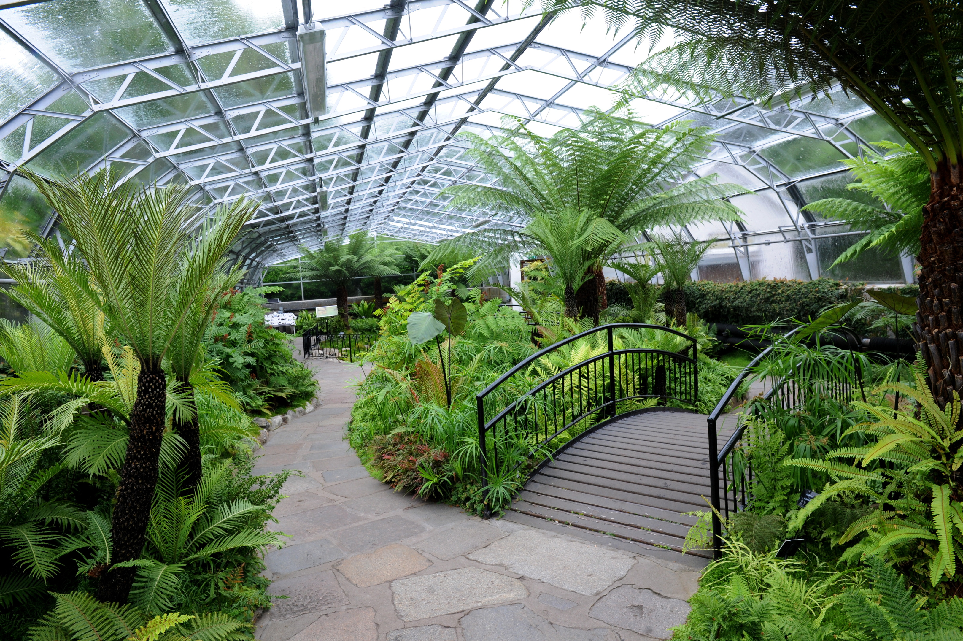 The Winter Gardens at Duthie Park