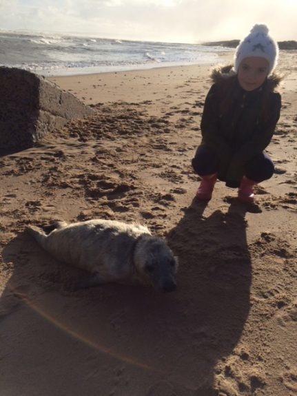 Eleanor with the seal near the Donmouth Local Nature Reserve.