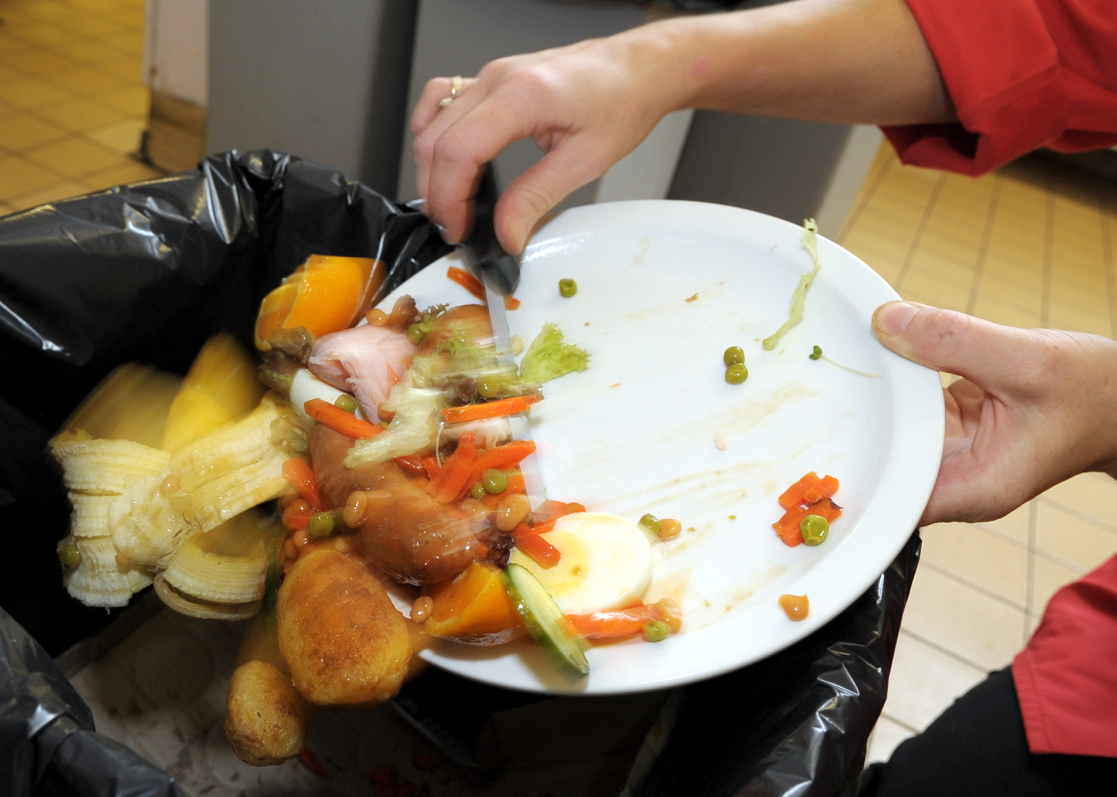 Under the plan, food waste will be collected every week