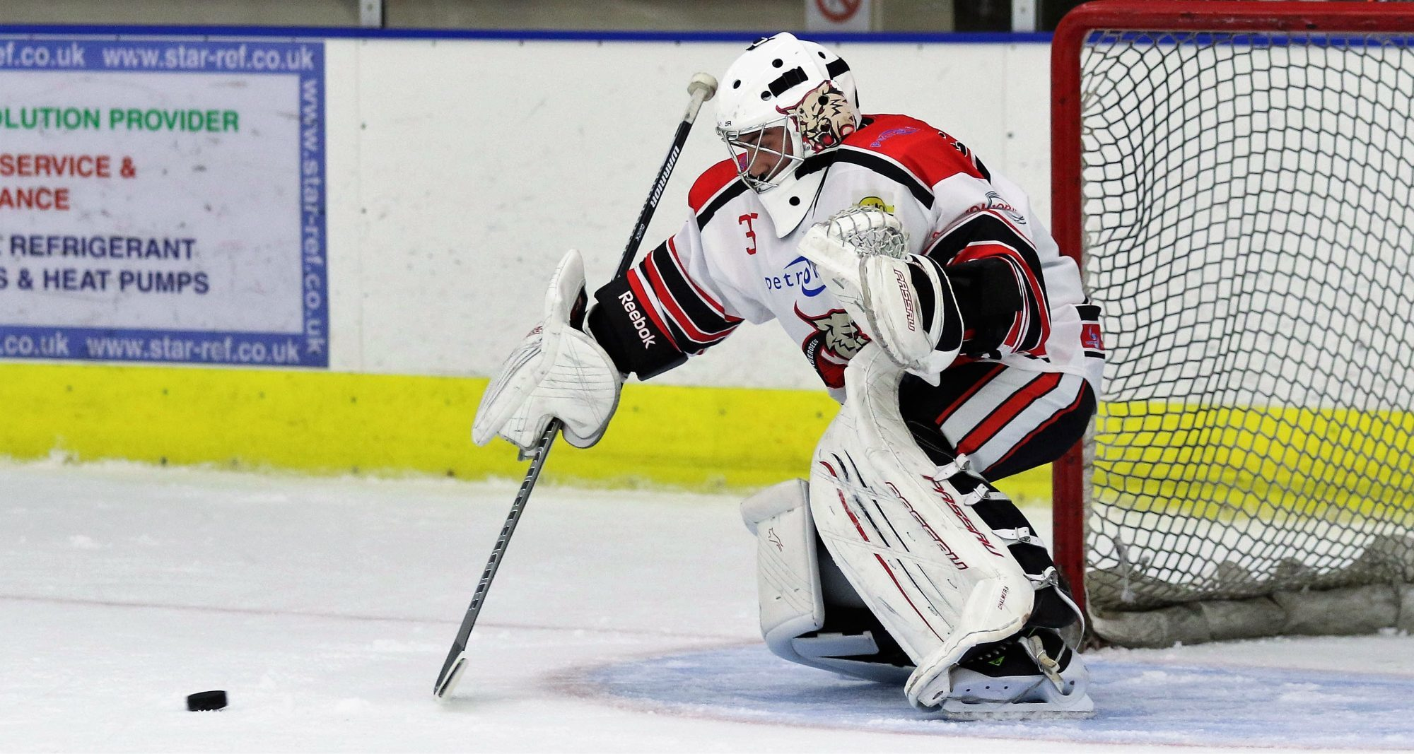 Aberdeen Lynx goaltender Craig Chalmers in action. Picture by Ferguson Photography.