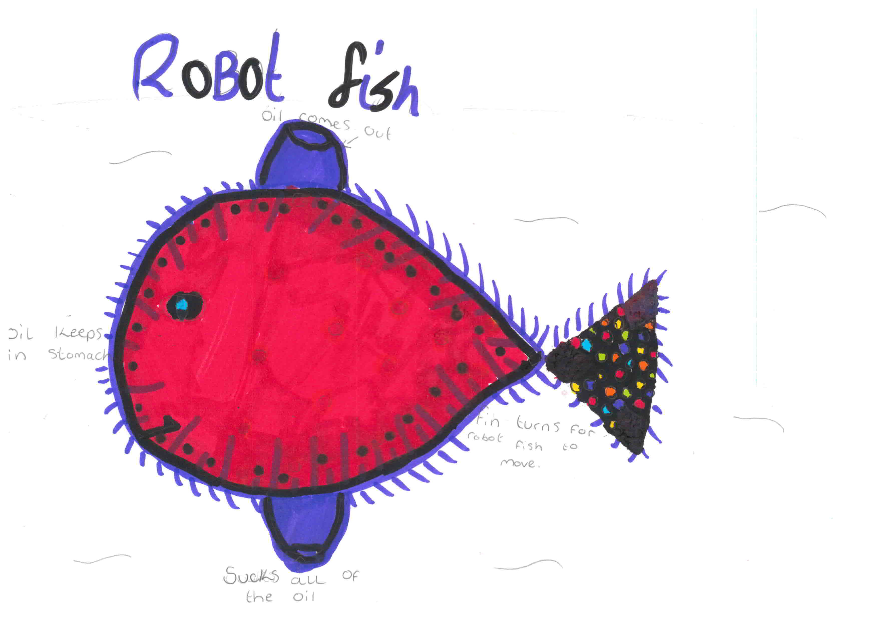 A robotic fish was one idea put forward by Leah Flanagan from Scotstown.