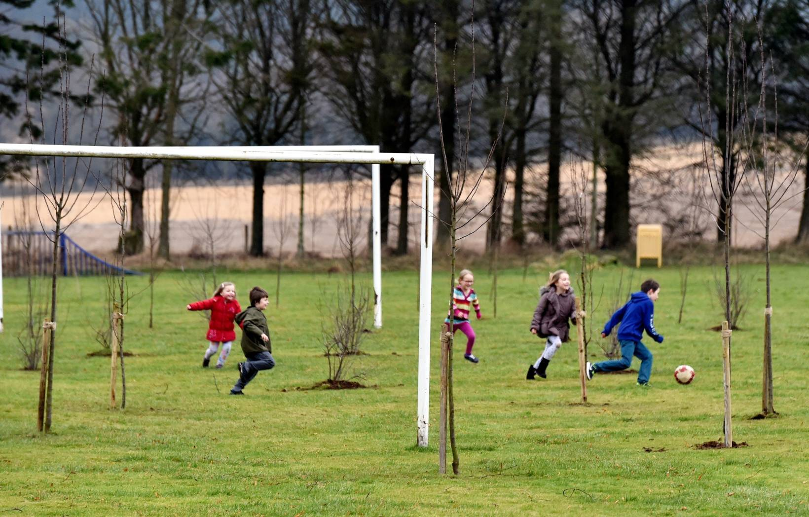 Council workers have planted lots of trees in the middle of a children's football pitch at Logie Durno