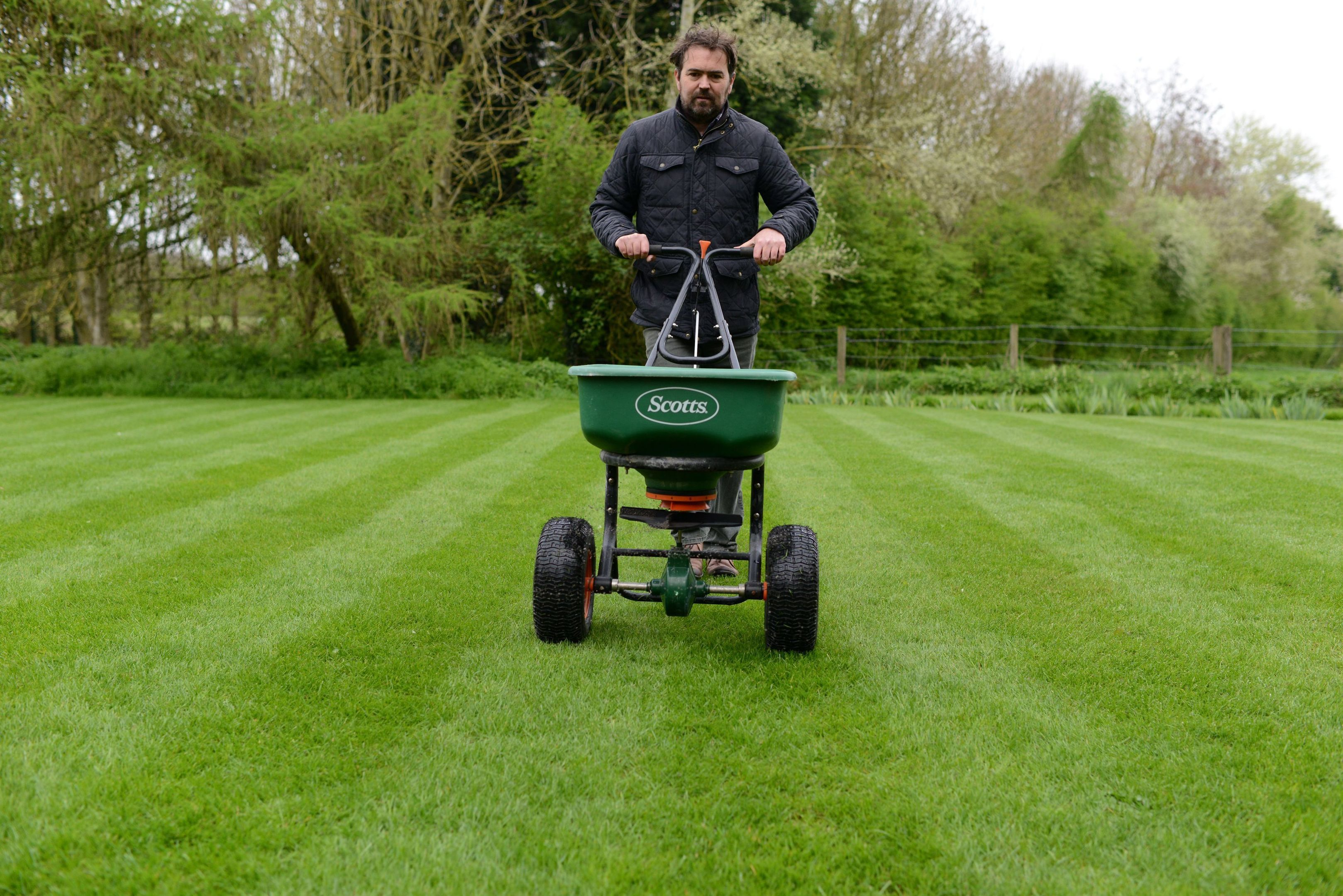 expert tips:  David Hedges-Gower is the author of Modern Lawn Care.