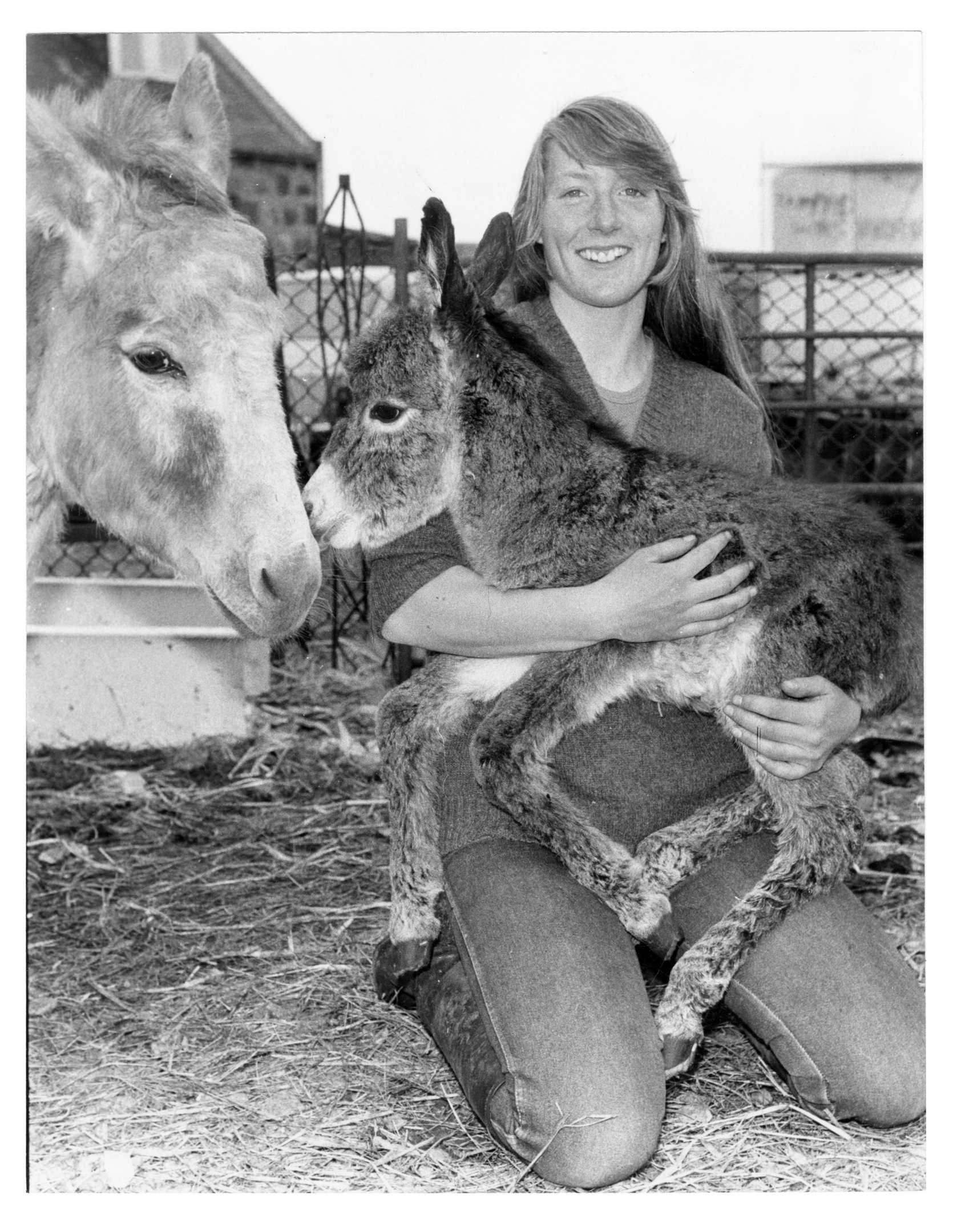 Susan Gilbert hugs this day-old donkey, while the youngster's mother, Olive, looks on.