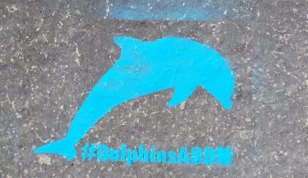 Stencilled dolphins have been appearing on pavements around the city.