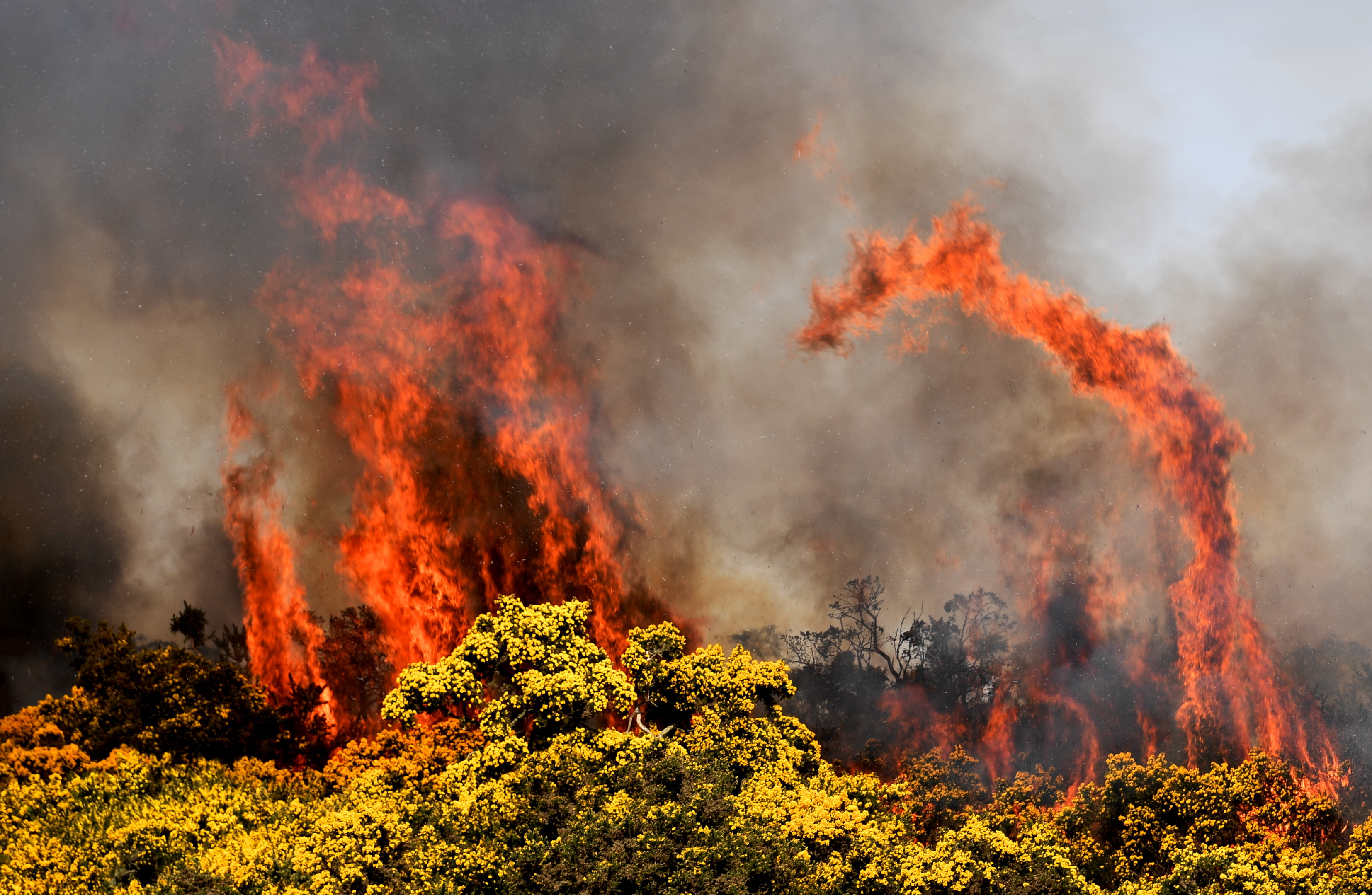 blaze:  Flames engulfed grass in the Kingswells area.