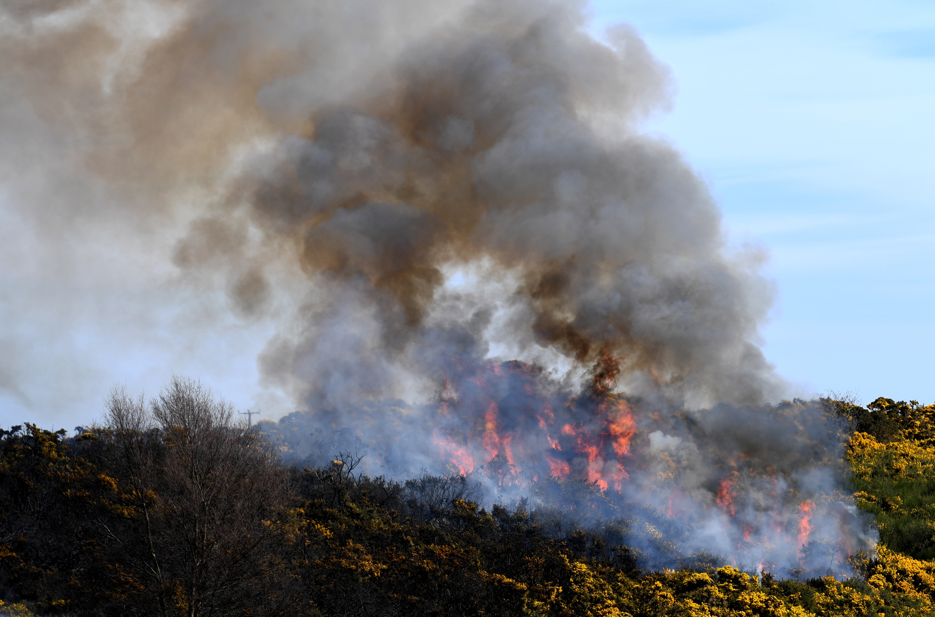 flames: Fire crews tackled the blaze for around eight hours on Saturday.