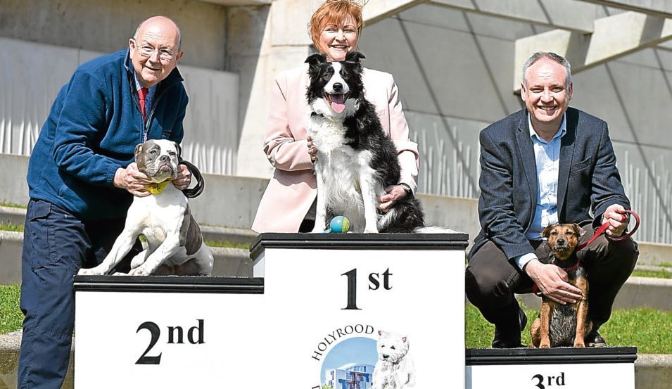 The first, second and third placed dogs and their MSPs.