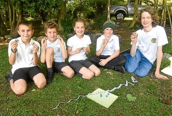 Cailean Annand-Hosie, left, and Tom Hall, right, with, from left, Dylan McCombie, 10, David Milne, 7 and Anna Milne, 9.