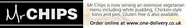 mr-chips2