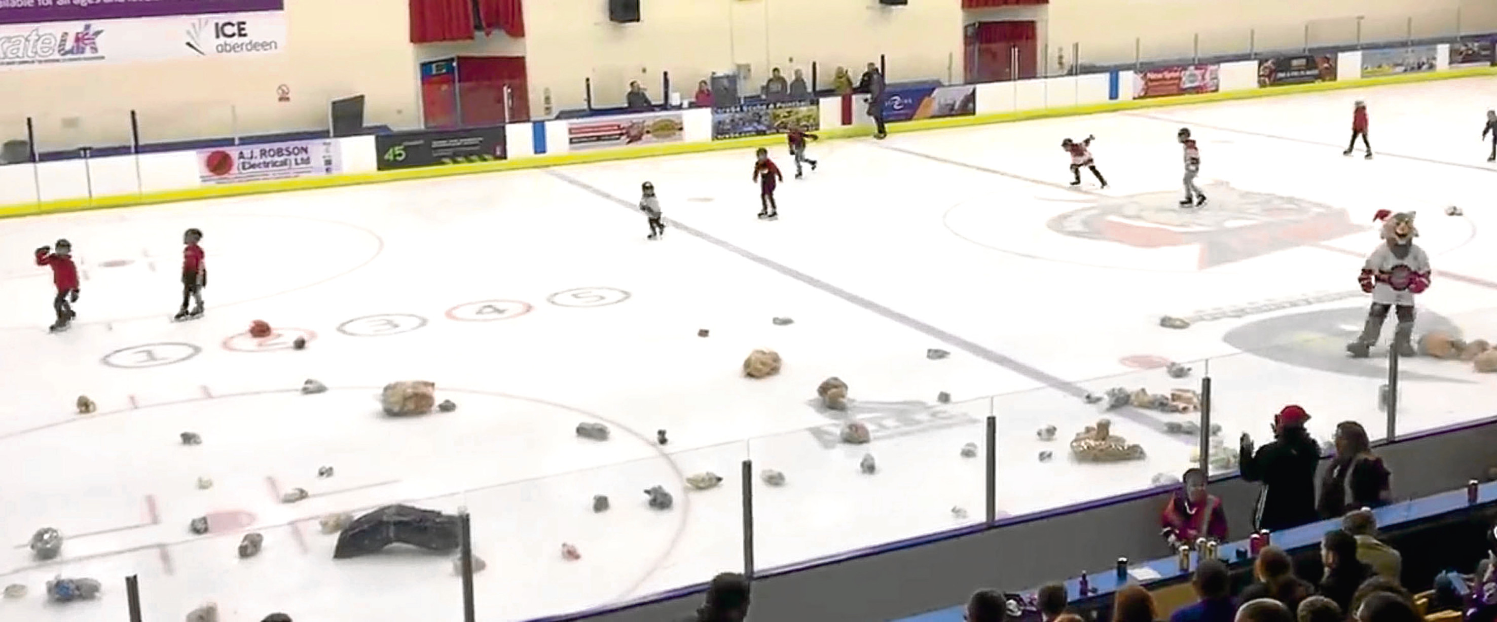 Hockey fans donated more than 200 teddy bears at a collection at the game on Saturday night.