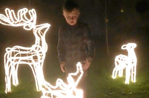 The reindeer in Pauline Munro's garden before they were stolen.