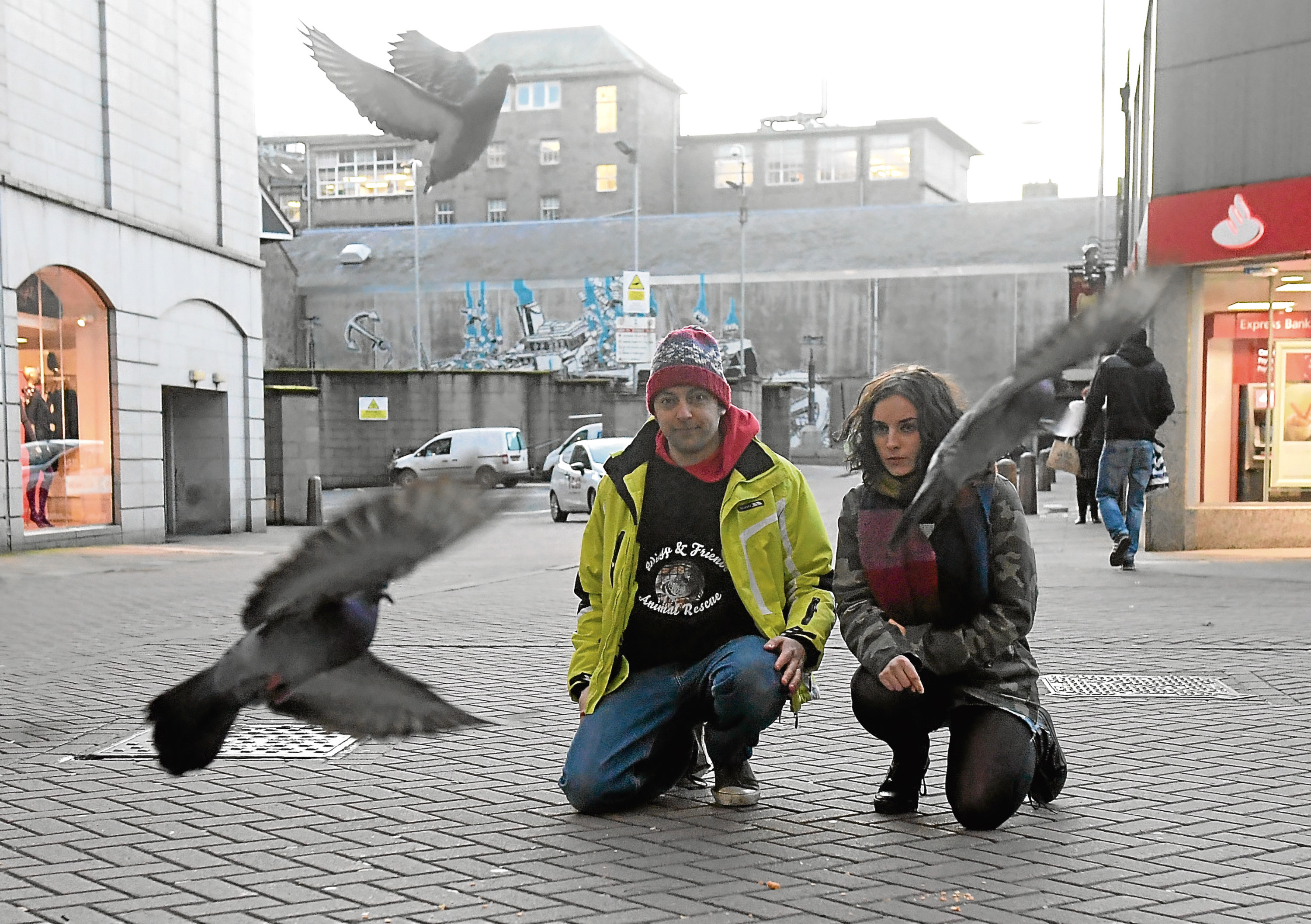 Kevin Newell and Flo Blackbourn are keeping a watchful eye on Aberdeen's pigeons so they can treat sick and injured birds.