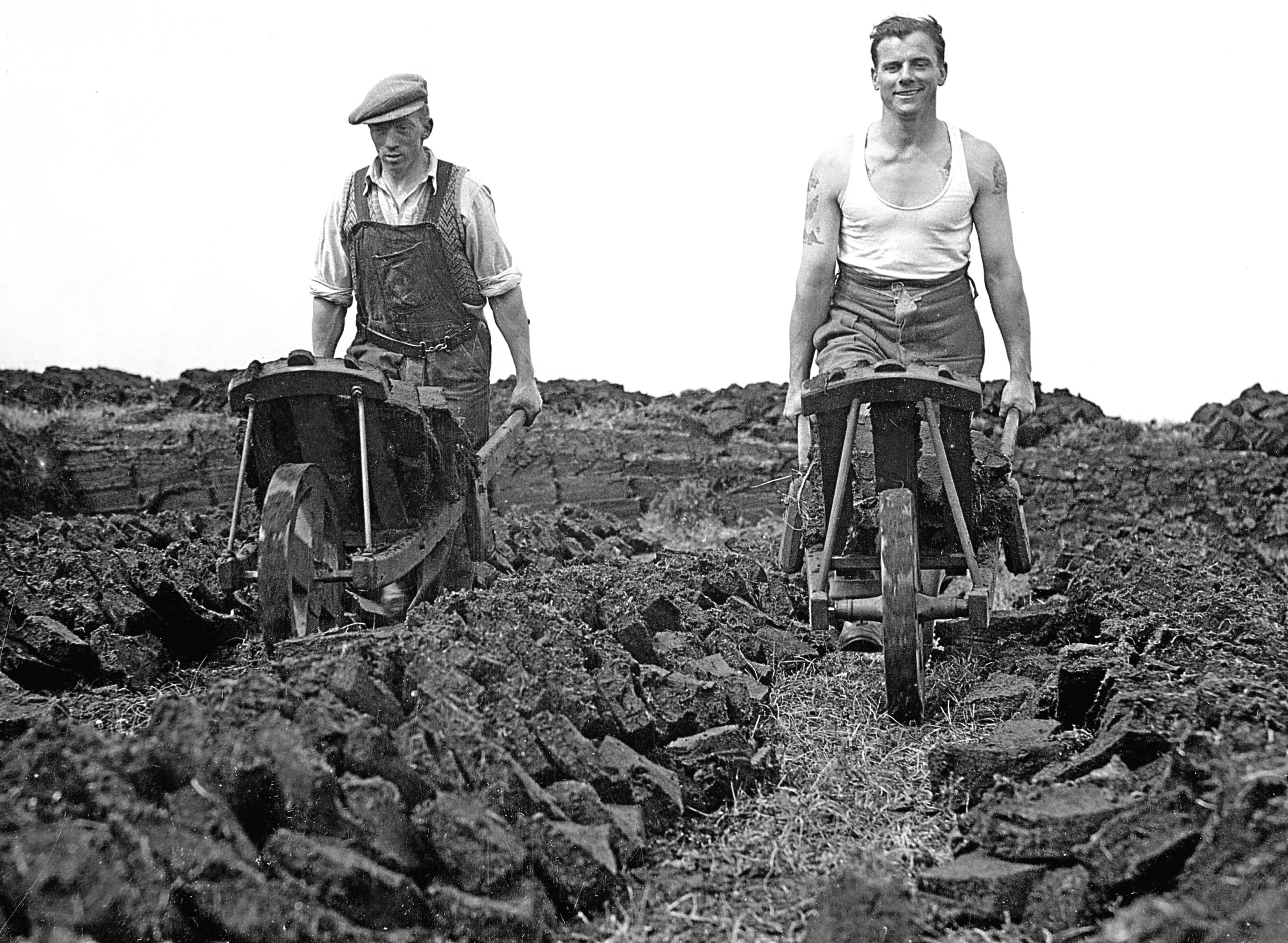 1947: Workers gather the peat cuttings.