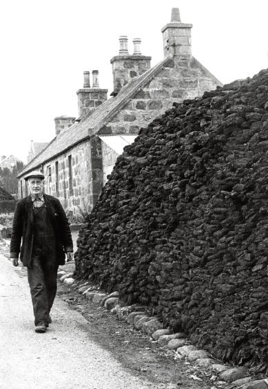 1964: William Calder, of Moss Grieve of Lyne of Skene Peat Moss, supervises the cuttings.