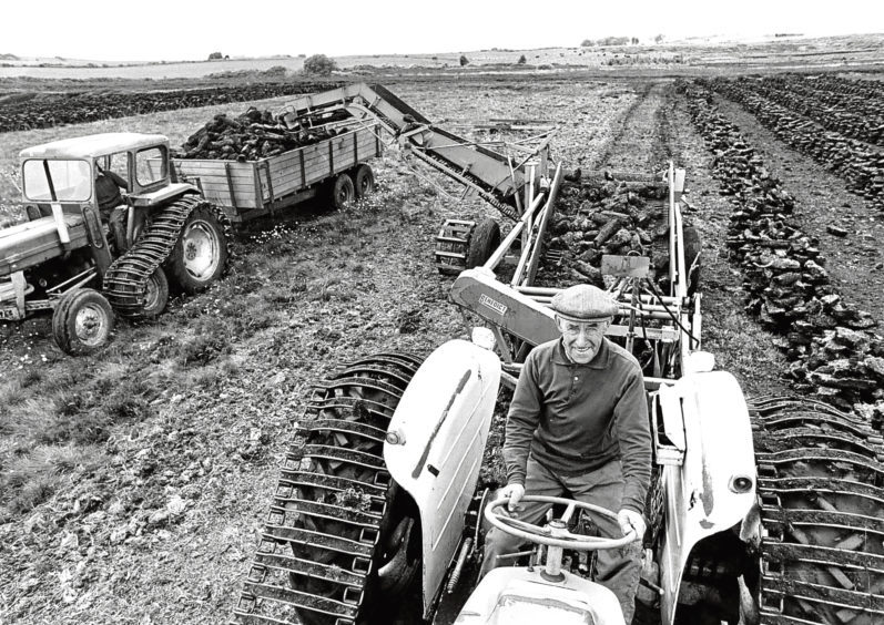 1977: Alex Wiseley gathers peat, which will be burned to flavour malted barley to make whisky.
