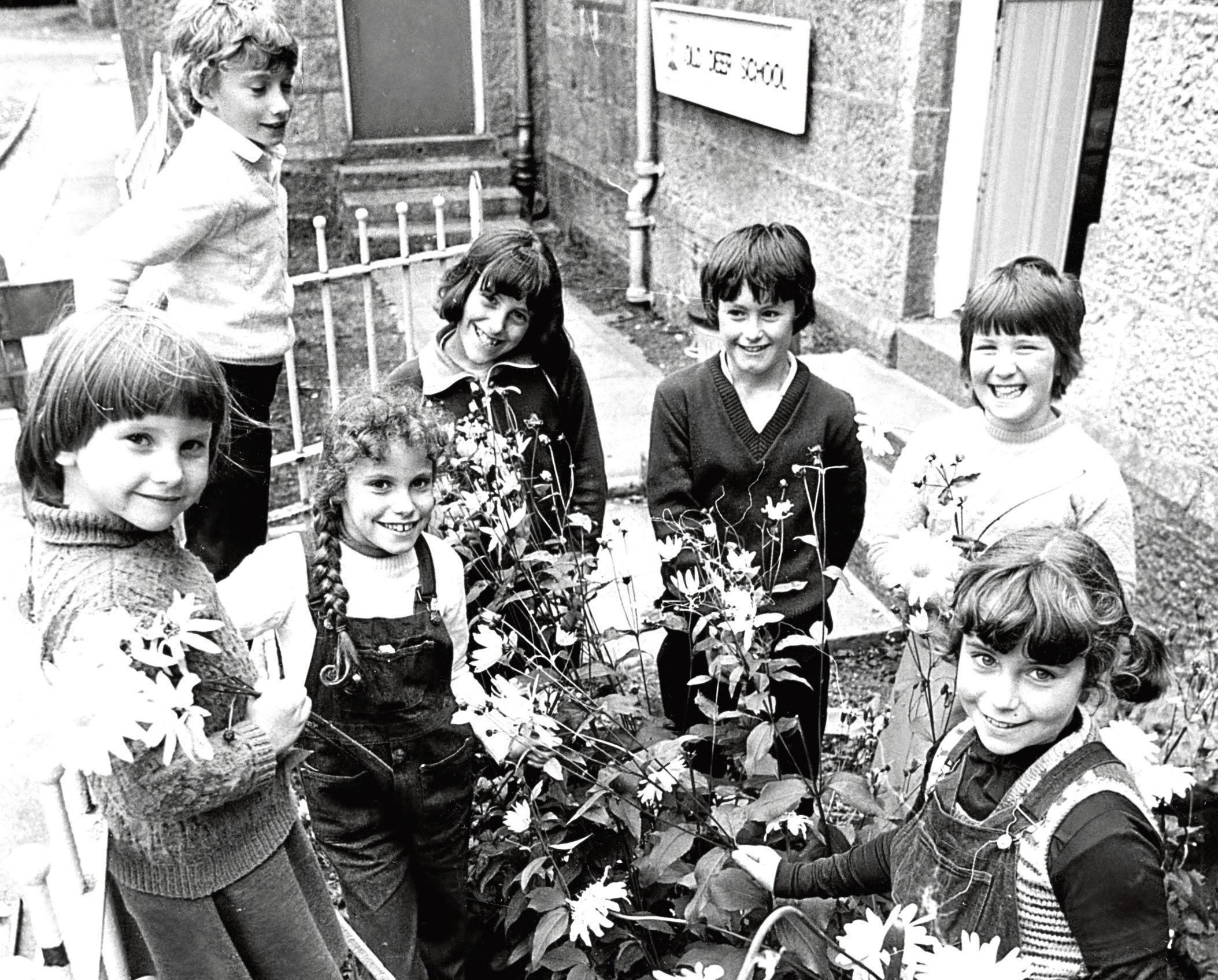 1981: The children picking flowers are Ann Campbell, 5, Mark Cruickshank, 11, Mary Bovey, 9, Janet Bovey, 10, Stephen Anderson, 11, Deborah Adamson, 10, and Alison Bovey, 9.